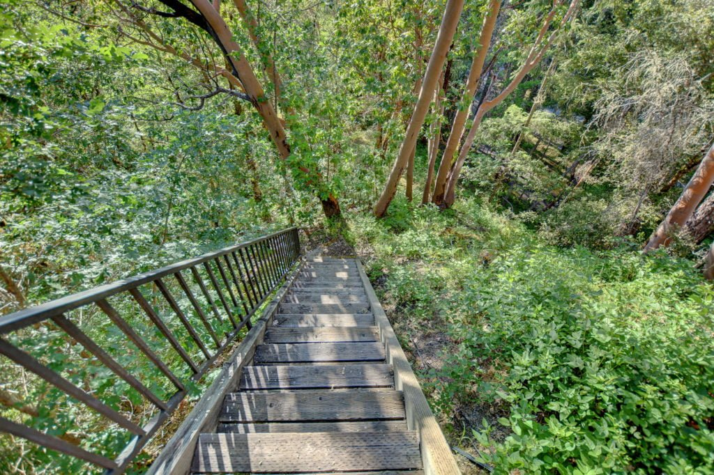 The Treetops House Trail Stairs