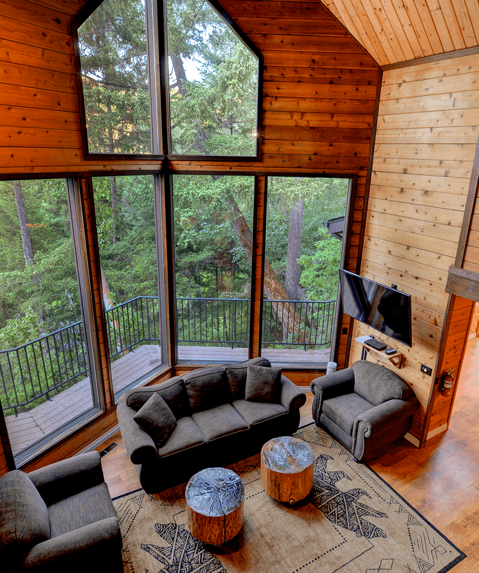 Treetops_House_Living_Room